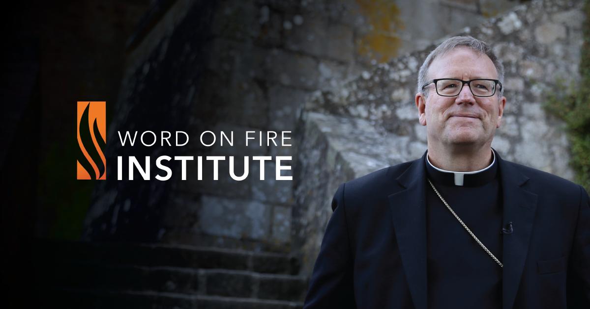 Login - Word on Fire Institute