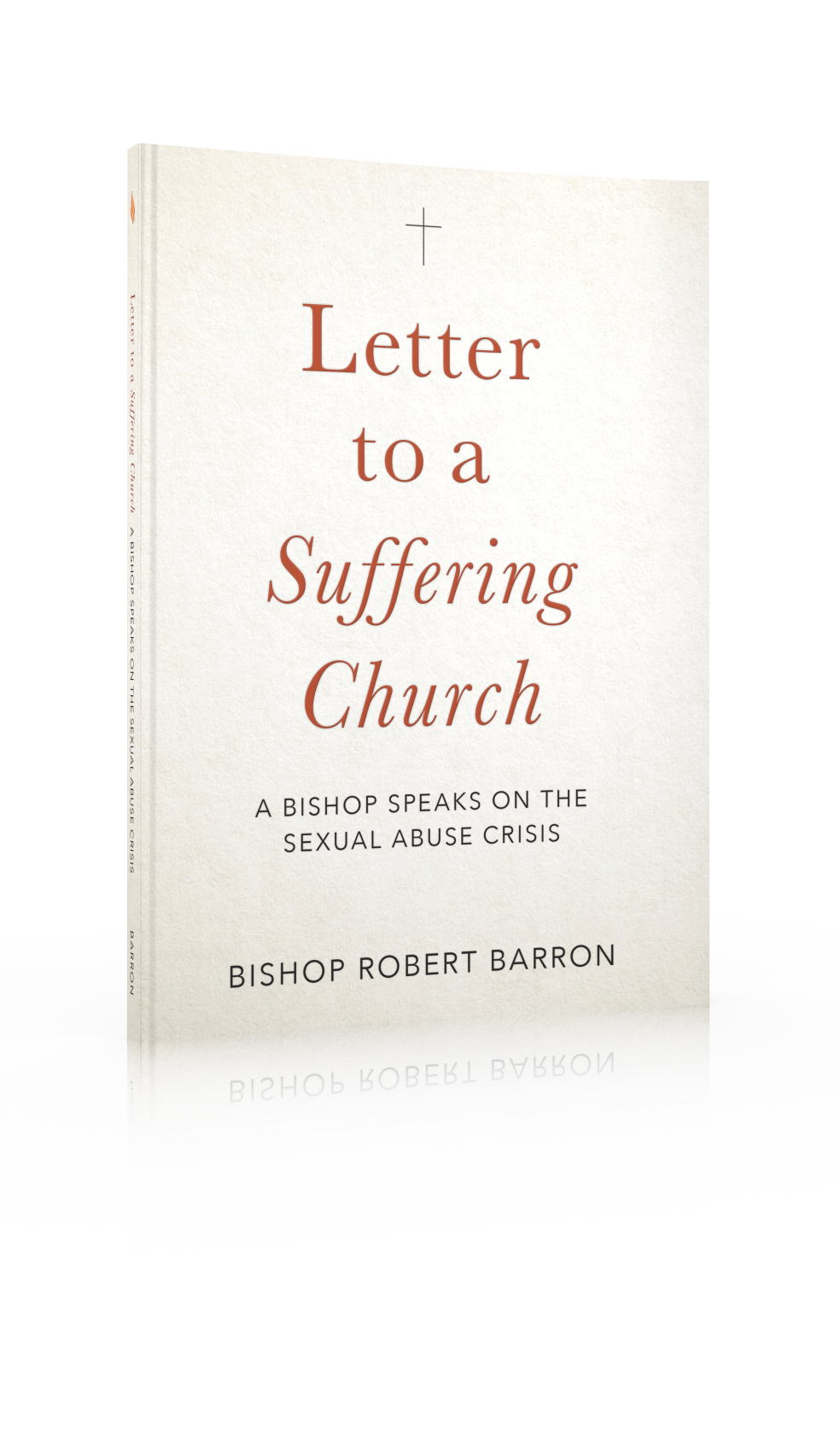 Letter to a Suffering Church – A Book Study of the Sex Abuse